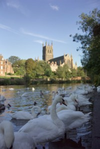 worcester-cathedral-5