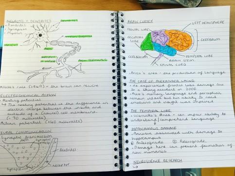 psychology-blog-image4