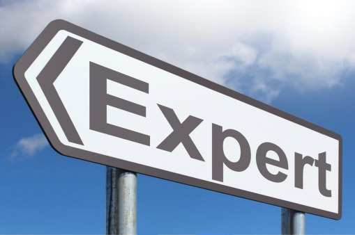 A sign with the word 'expert' on it is highlighted against a clear blue sky.